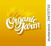 organic farm logo | Shutterstock .eps vector #246737710