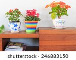 Decorative Flower In Home