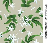 jasmine seamless background | Shutterstock .eps vector #246941068