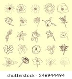 floral set  vector illustration. | Shutterstock .eps vector #246944494