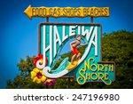 haleiwa  hawaii  usa. road sign ... | Shutterstock . vector #247196980