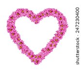 image of heart frame from... | Shutterstock . vector #247230400