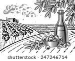 olive harvest landscape black... | Shutterstock .eps vector #247246714