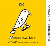 hand drawn animal illustration  ...   Shutterstock .eps vector #247390300