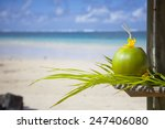 coconut at the beach   mauritius | Shutterstock . vector #247406080