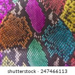 snake skin background | Shutterstock . vector #247466113