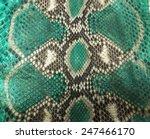 snake skin background | Shutterstock . vector #247466170