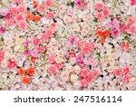 beautiful flowers background... | Shutterstock . vector #247516114