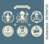 vector design elements ... | Shutterstock .eps vector #247556710