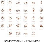 vector vegetables icon set | Shutterstock .eps vector #247613890