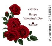 Stock vector valentine s day greeting card design with beautiful red roses 247635814