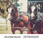 Shire Horse Pulling A Wagon In...
