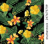 floral pattern with tropical... | Shutterstock . vector #247675759