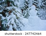 Snowman And Pine In Winter...