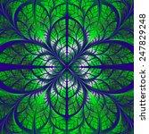 symmetrical pattern of the... | Shutterstock . vector #247829248