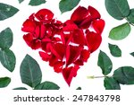 red heart from the rose leaves... | Shutterstock . vector #247843798