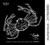 hand drawn animal illustration  ... | Shutterstock .eps vector #247860880