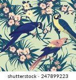 vintage style seamless pattern... | Shutterstock .eps vector #247899223
