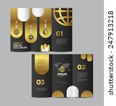 vector graphic elegant abstract ... | Shutterstock .eps vector #247913218