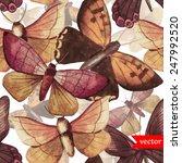 Pattern  Butterfly  Brown ...