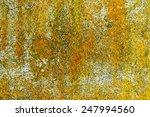 Yellow Lichen Texture On...