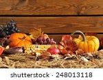 thanksgiving   vegetable and... | Shutterstock . vector #248013118