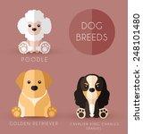 dog breeds | Shutterstock .eps vector #248101480