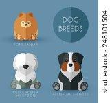 dog breeds | Shutterstock .eps vector #248101504