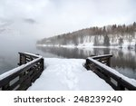 Winter On The Lake Bohinj In...