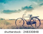beautiful landscape image with... | Shutterstock . vector #248330848
