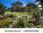 View Of Wellington Botanic...
