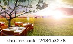 idyllic outdoor restaurant in... | Shutterstock . vector #248453278