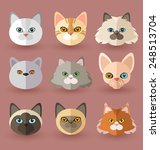 cat breeds | Shutterstock .eps vector #248513704
