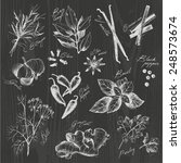 vector collection of ink hand... | Shutterstock .eps vector #248573674