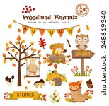 animal woodland autumn vector... | Shutterstock .eps vector #248619340