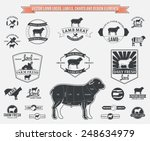 vector lamb logos  labels ...   Shutterstock .eps vector #248634979
