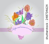 bouquet of tulips and crocuses... | Shutterstock .eps vector #248734624