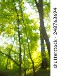 green background | Shutterstock . vector #248763694