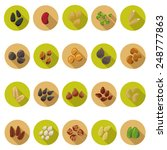 seed icons set in flat design... | Shutterstock .eps vector #248777863