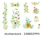 watercolor beautiful flowers... | Shutterstock .eps vector #248802994