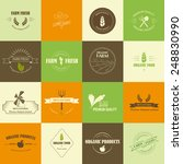 perfect set of organic food... | Shutterstock .eps vector #248830990