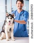 Stock photo veterinarian is examining a cute siberian husky at hospital 248845093