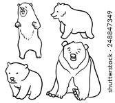 vector set of bear | Shutterstock .eps vector #248847349