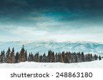 beautiful winter landscape with ... | Shutterstock . vector #248863180