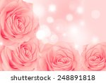 background of flowers roses | Shutterstock . vector #248891818
