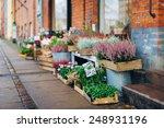 lot of flowers in the wooden... | Shutterstock . vector #248931196