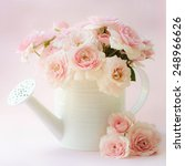 roses in a decorative watering... | Shutterstock . vector #248966626
