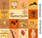 Square Woodland Animal Autumn...