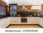 horizontal view of modern... | Shutterstock . vector #249022960
