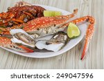 spiny lobster  crab and oyster... | Shutterstock . vector #249047596